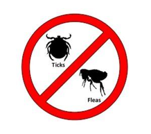Tick & Flea Products