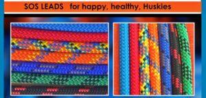 3m Happy Husky Leads